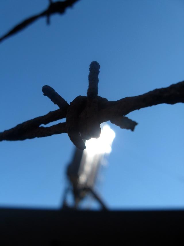 barbed wire Make Something Mondays