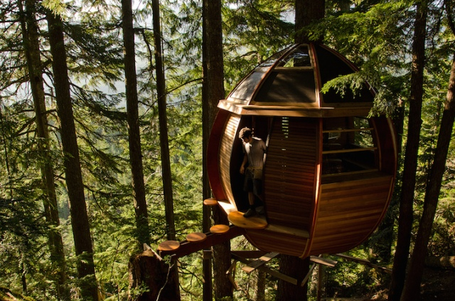 Hemloft tree house