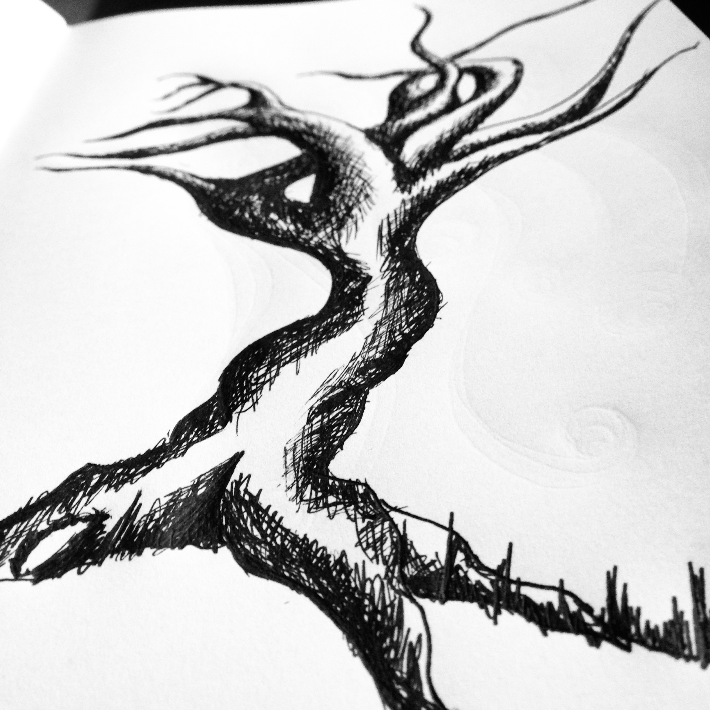 It is a picture of Dashing Tree Pen Drawing
