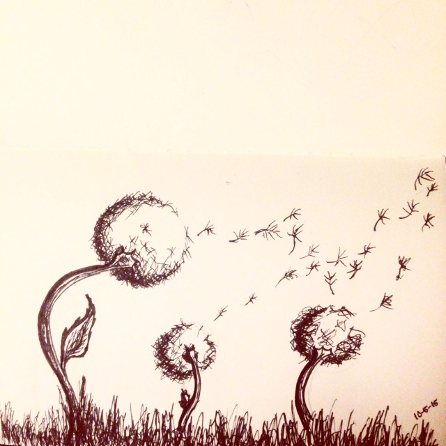 dandelion  drawing inktober