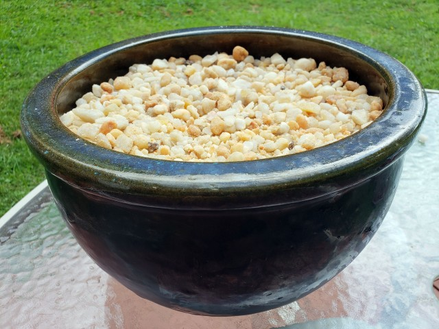 fill bowl with pea gravel